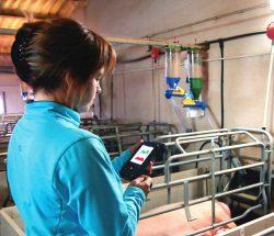 PDAs Android con lector RFID LF en explotaciones ganaderas